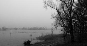 Bilder aus dem März 2016: Nebel überm Rhein