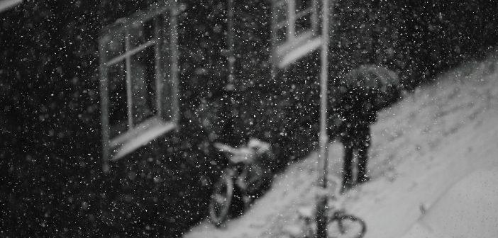 Bild der KW24: Im Winter