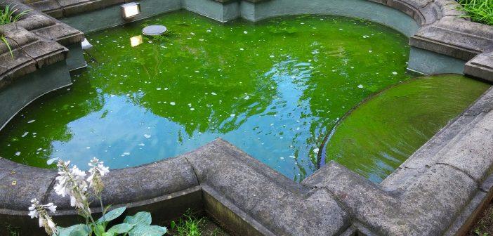 Der Jan-Wellem-Brunnen am Staufenplatz