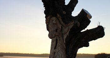 Der Baumgeist der Himmelgeister Kastanie (via Wikimedia)