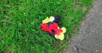 Deutsche Blüten verwelken im Gras