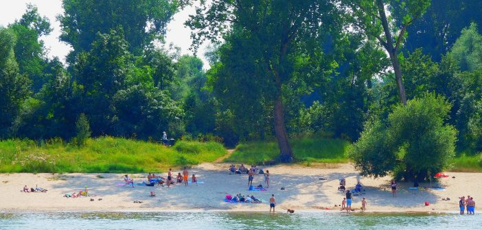 Bilder aus dem Juli 2016: Löricker Strandleben