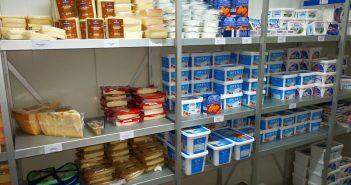 Reiche Auswahl an griechischem Käse