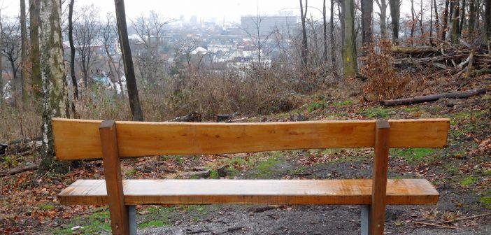 Bei der Schönen Aussicht im Grafenberger Wald