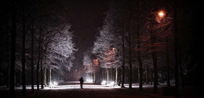 BdW12: Fotograf im Hofgarten