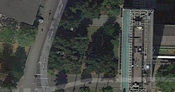 Google-Map: Hier steht die Düsseldorfer Beuys-Eiche