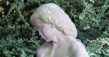 Düsselquiz 85: Unbekannte Schöne