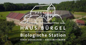 Biologische Station Haus Bürgel - hier werden auch Spatzen gezählt